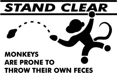 monkeys_fling_poo.jpg